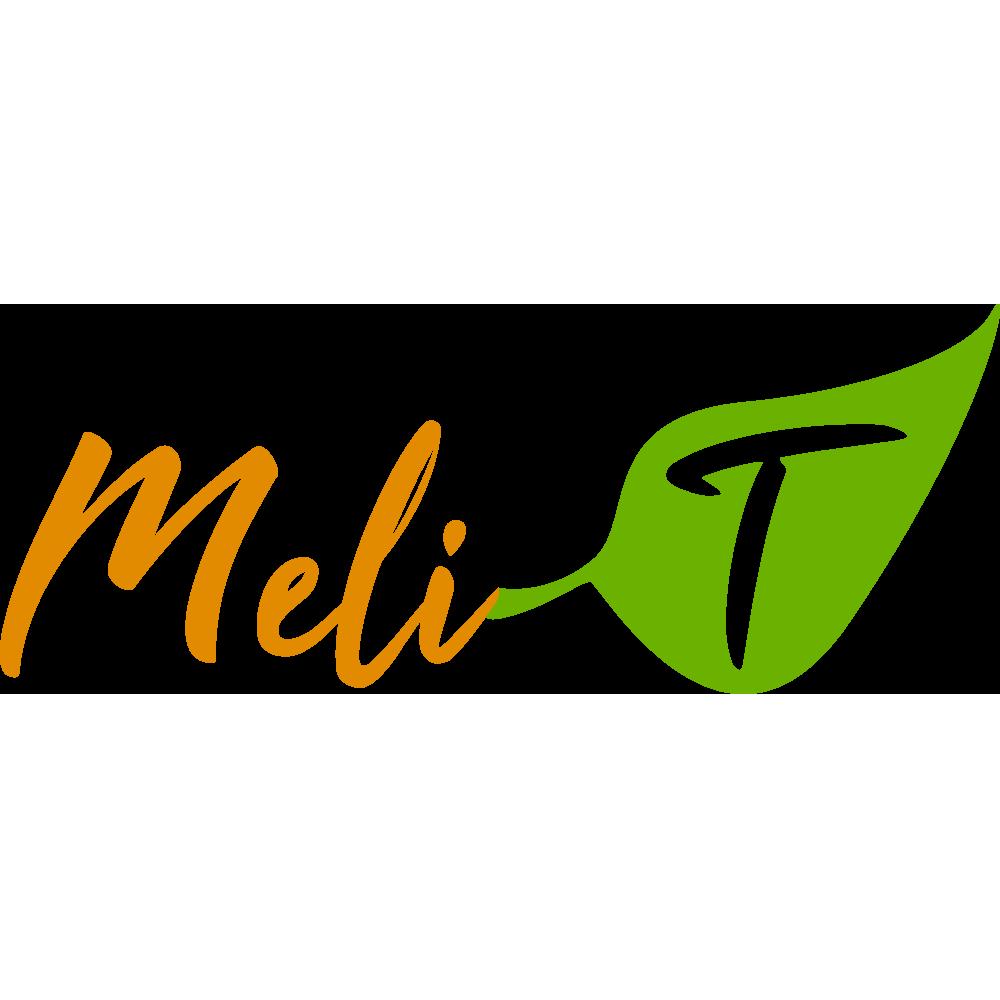 LiDesing logo Illustrator Meli-T